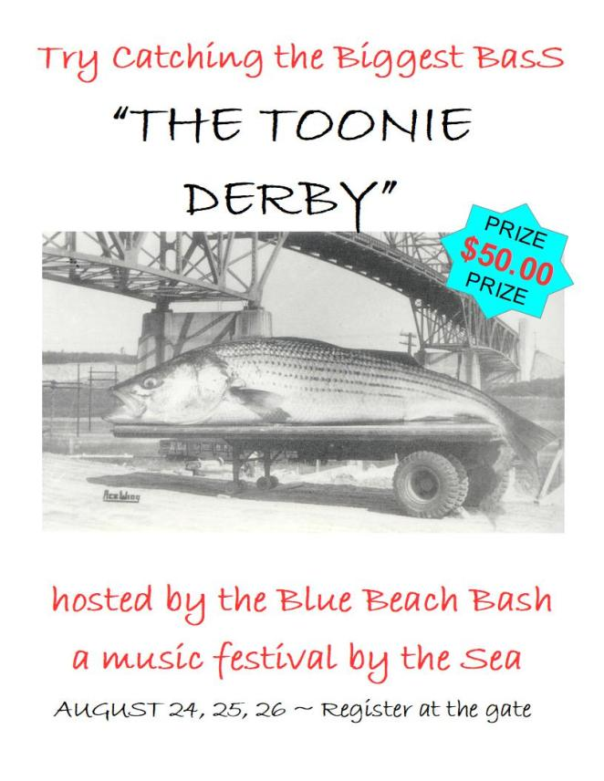 The Toonie Derby
